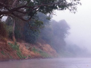 Misty Morning, Tsiribina River, Madagascar