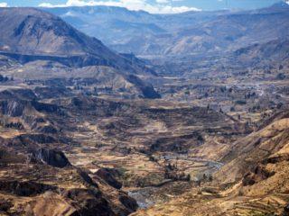 Canyon – Colca, Peru