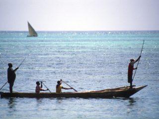 Two Sails, Zanzibar, Tanzania